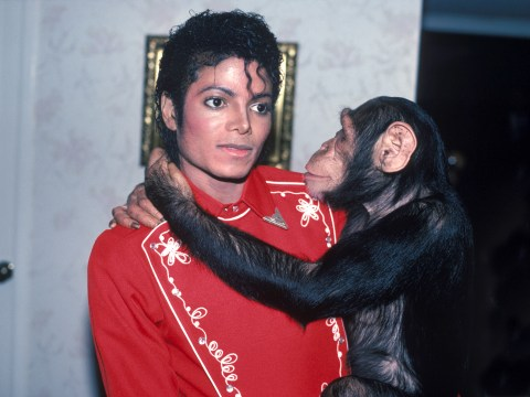 Netflix ditches Michael Jackson film about his chimpanzee Bubbles