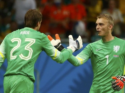 Louis van Gaal hailed a genius as penalty specialist Tim Krul sees Holland past Costa Rica