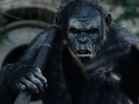 7 reasons you need to see Dawn of the Planet of the Apes