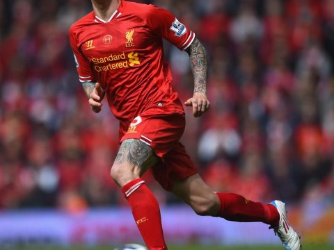 Daniel Agger 'to be offloaded by Liverpool this summer' as they attempt to sign Southampton's Dejan Lovren
