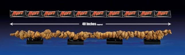 Fossilised poo, Mars bar