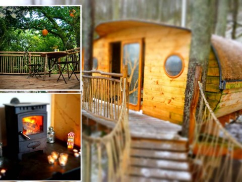 6 treehouses that you can actually stay in