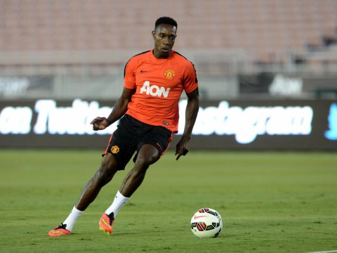 Sunderland to challenge Arsenal and Tottenham for Manchester United's Danny Welbeck