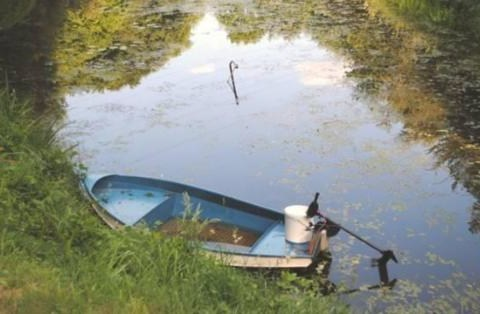 German schoolboy drops phone on fishing trip, drains entire pond to look for it