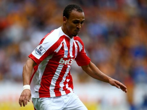Peter Odemwingie's injury takes the shine off Stoke City's perfect Saturday