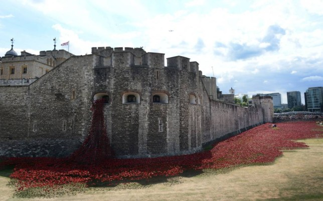 An evolving art installation 'Blood Swept Lands and Seas of Red' by artist Paul Cummins at the Tower of London, as the Historic Royal Palaces, Tower of London, prepares to mark the centenary of World War I. PRESS ASSOCIATION Photo. Picture date: Sunday August 3, 2014.  Due to be officially unveiled on August 5th 2014, there will eventually be a total of 888,246 ceramic poppies installed in the Tower's moat, each representing a British military fatality during the war. Photo credit should read: Stefan Rousseau/PA Wire