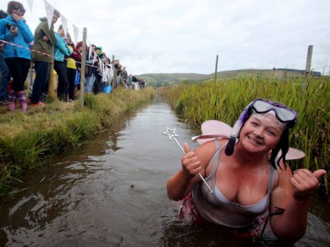 Ideal bank holiday weather for ducks and World Bog Snorkelling Championships 2014