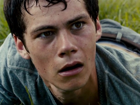 The Maze Runner sequel, Scorch Trials, has been given a 2015 release date