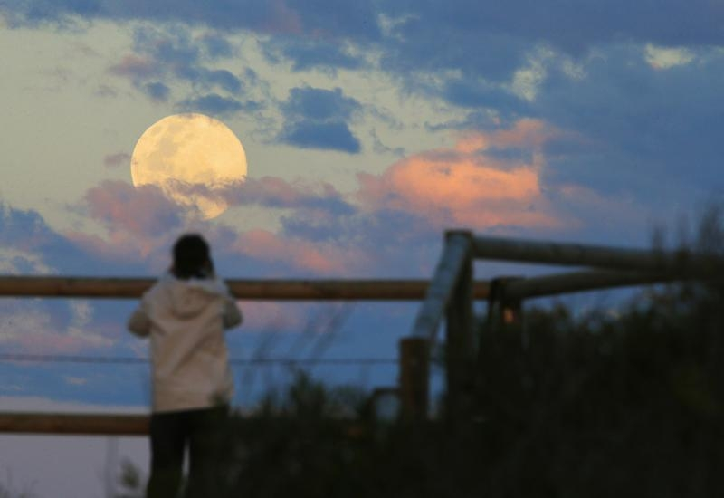 Sydney resident Virginia Maddock watches the supermoon rise off the Sydney beachside suburb of Wanda, August 10, 2014. The astronomical event occurs when the moon is closest to the Earth in its orbit, making it appear much larger and brighter than usual. REUTERS/Jason Reed (AUSTRALIA - Tags: SOCIETY TPX IMAGES OF THE DAY ENVIRONMENT) - RTR41UGV