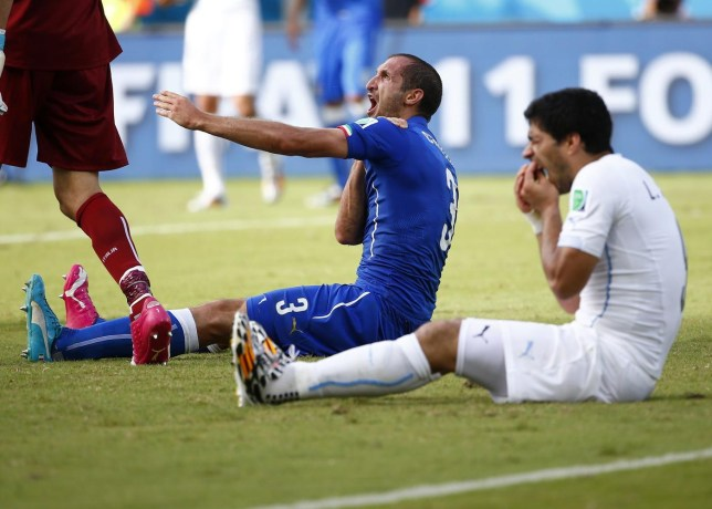 Uruguay's Luis Suarez (R) reacts after clashing with Italy's Giorgio Chiellini during their 2014 World Cup Group D soccer match at the Dunas arena in Natal in this June 24, 2014 file photo. Suarez has finally apologised for biting Chiellini during the World Cup match and vowed there would never be a repeat of the incident. REUTERS/Tony Gentile/Files (BRAZIL - Tags: SPORT SOCCER WORLD CUP) Tony Gentile/Reuters