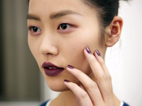 Fall 2014 makeup trends and picks