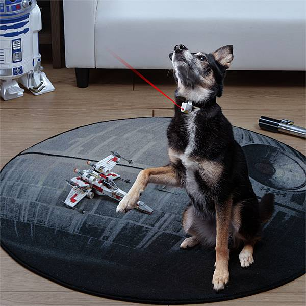 This toy will make your pet run about like a panicking Minion