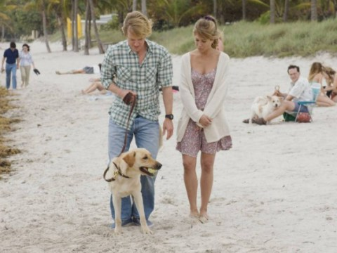 There's going to be a TV series based on Marley and Me, with a brand new Marley