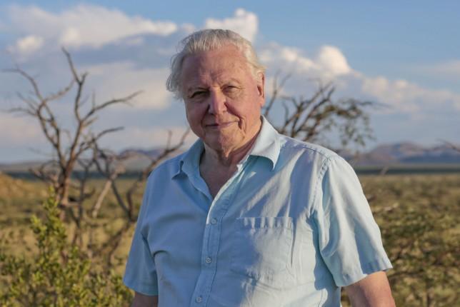 Sir David Attenborough Life Story
