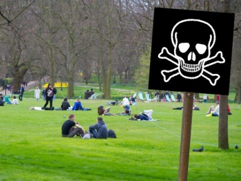 Playground or plague ground? Mass graves where we live, work and picnic in London