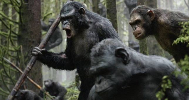 "EMBARGOED FROM ONLINE FOR 3:01 AM EDT Koba (Toby Kebbell) leads the battle in a scene from the motion picture ""Dawn of the Planet of the Apes."" CREDIT: WETA/20th Century Fox"