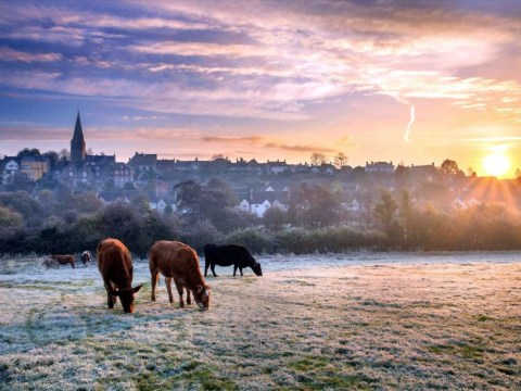 UK weather: 'Beast from the East' suggests cold Christmas and New Year