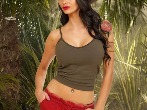 I'm A Celebrity 2014: Why can't we have some women of note in the jungle?