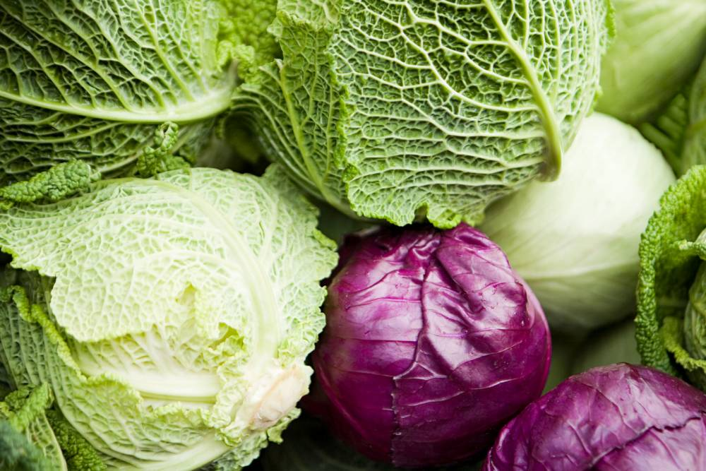 Halifax and Bank of Scotland bankers were punished with cabbages if they didn't sell 'toxic' loans