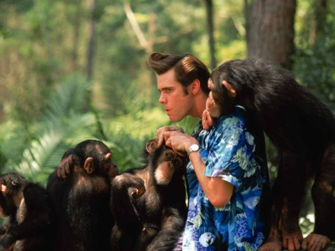 Alrighty then! Ace Ventura: Pet Detective might be getting a remake