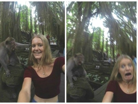 This woman took a selfie with a monkey and it didn't go as planned
