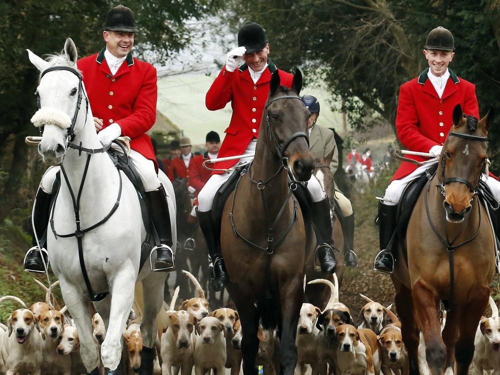 Repealing the fox hunting ban is a waste of time