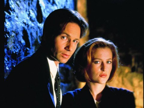 It's official! Fox is in talks to bring back The X-Files – and David Duchovny and Gillian Anderson are set to return too