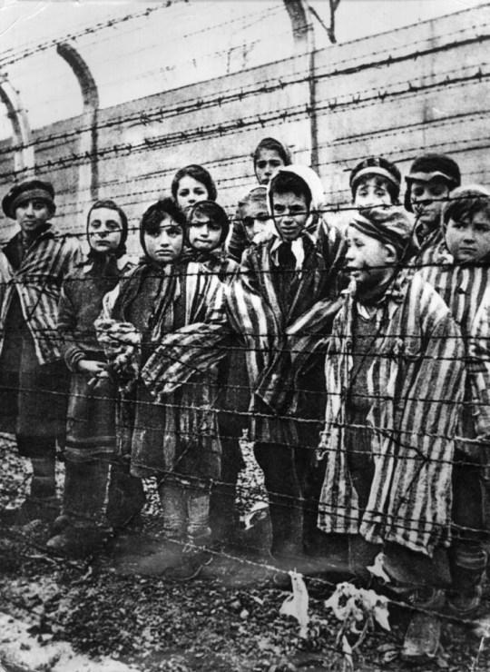 Des enfants derrière une clôture de barbelés à Auschwitz