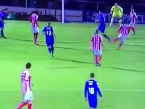 Bojan proves he can do it on a cold Monday night for Stoke City with stunning FA Cup volley