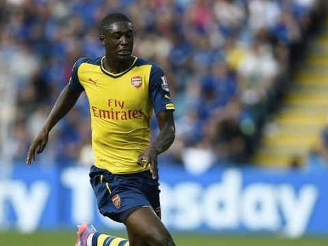 Arsene Wenger willing to loan out Arsenal's Yaya Sanogo in January – but only to a Premier League club