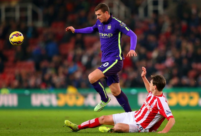 Edin Dzeko says Wilfried Bony signing won't force him out of Manchester City