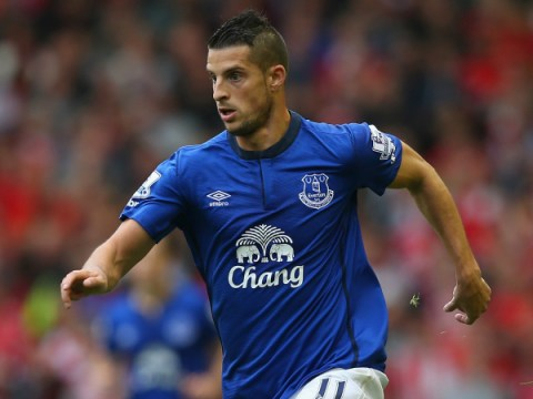 Tottenham 'plot £23.5m transfer swoop for Everton's James McCarthy and Kevin Mirallas'