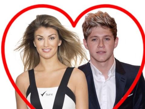 One Direction dark horse Niall Horan has been 'enjoying secret nights with model Amy Willerton'