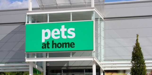 Pets At Home Put Down Sick Pet Cat And Keep It In Freezer After He