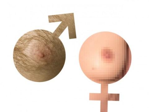 Quiz: Spot the totally unacceptable female nipple