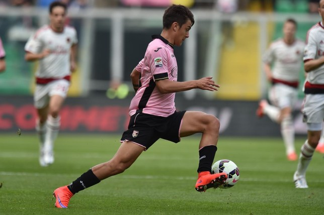 d822d3682a3 Arsenal handed transfer blow with Palermo forward Paulo Dybala  preferring  Serie A stay