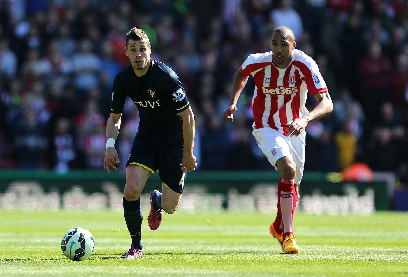 Arsenal 'cool interest' in transfer for Southampton's Morgan Schneiderlin following impressive form of Francis Coquelin