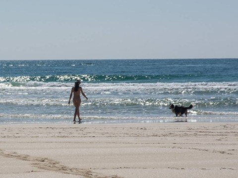 Naked woman taking a stroll with her dog spotted on beach in Cornwall