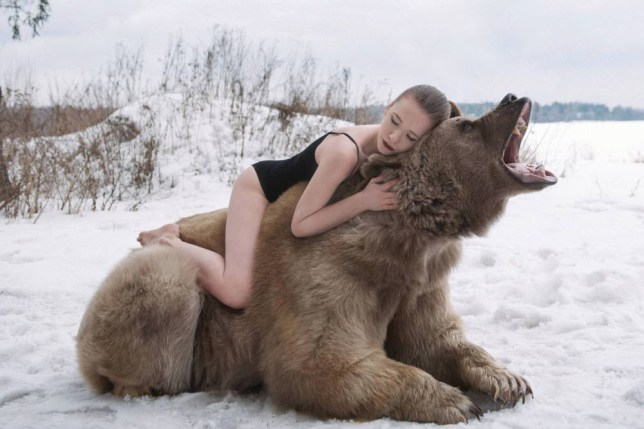 PIC BY OLGA BARANTSEVA/ CATERS NEWS - (PICTURED: Lidia Fetisova modelling with Stephen the bear) - Two scantily clad models pose with a giant brown bear - in a bizarre bid to raise awareness about the ferocious predators softer side. The strange scenes were pictured in a forest outside of Moscow, Russia, and have gone viral in the country. The series of photos show two models - Maria Sidorova and Lidia Fetisova - hugging, cuddling and kissing the 650kg bear, named Stephen. Photographer Olga Barantseva, who captured the dream-like series of snaps, said: We wanted to show the natural harmony between humans and bears. SEE CATERS COPY.