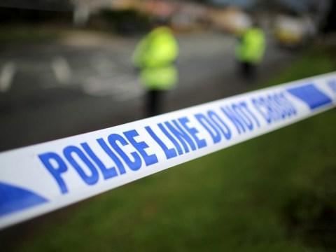 West London woman arrested in terror probe