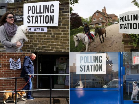 General Election 2015: Voters are taking their animals to polling stations