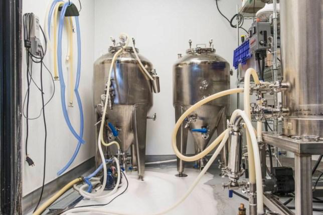 Beer brewing tanks in brewery