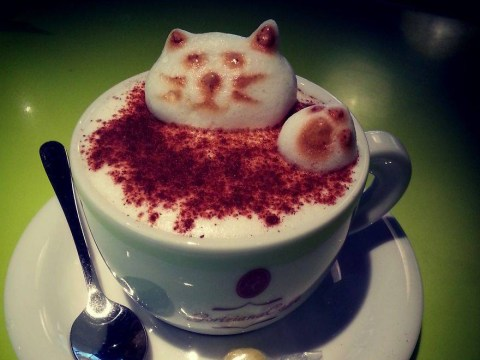 Have we found the most amazing latte artist ever?