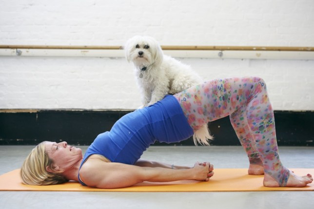 DOGA comes to London Pet Show (Image credits Photographer - Theo Cohen for London Pet Show. Class led by Dogamahny (Mahny and her Maltese dog Robbie) (20)
