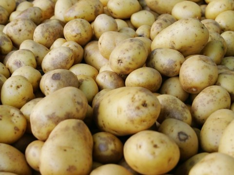 Woman suffers heart attack after being struck by 'flying potato'