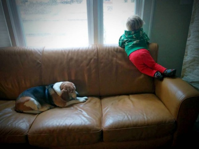 """MUST CREDIT: Mary Architzel Westbrook/Distinction Magazine MUST LINK: http://distinctionhr.com/2015/06/letter-from-heaven/  After their dog passed away in April, a Virginia mom and her 3-year-old son developed a special ritual to remember the beloved pet.  For the last few months, Mary Westbrook and her son Luke have sat down together to write messages to their beagle, Moe, and then """"send"""" the letters from their home in Norfolk, Virginia.  Boy sends letter to """"Doggie Heaven"""" - and gets a tear-jerking response Courtesy of Mary Architzel Westb Moe, beloved 13-year-old beagle of Mary and Roberto Westbrook of Norfolk, VA, passed away in April. """"Because you can't fool a three-year-old, we take the letter to our mailbox,"""" Westbrook wrote on her blog, noting that they address the notes to """"Moe Westbrook, Doggie Heaven, Cloud 1.""""  Westbrook usually retrieves the note from the mailbox later in the day so that her son believes they've been delivered, but two weeks ago, she forgot to collect their message and assumed it had been discarded.  And on Wednesday morning, they got an incredible surprise: a response from """"Moe."""" The unstamped note which showed up in the family's mailbox read, """"I'm in doggie heaven. I play all day. I am happy. Thank you 4 being my friend. I wuv you Luke.""""  Boy sends letter to """"Doggie Heaven"""" - and gets a tear-jerking response Courtesy of Mary Architzel Westb The family received this message from """"Moe"""" in their mailbox. Westbrook was floored by the letter, as the dog had meant so much to the family.  """"Moe came into my life 13 years ago and he made things more complicated and smelly - but also, well, wonderful,"""" she wrote. """"I still miss him every day.""""  She kept the note by her desk all day and finally gave it to Luke that night. After all, he was the one who had come up with the idea to write Moe in the first place.  """"They were real buddies,"""" she told TODAY.com.  She still doesn't know who was behind the letter, but says she was just happy to see Luke s"""