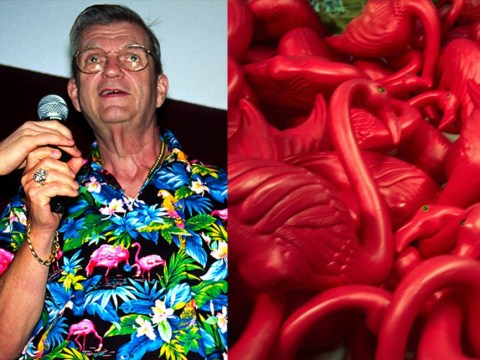 The late inventor of the lawn flamingo becomes a Twitter icon