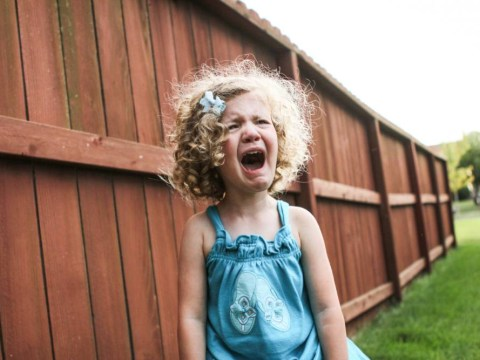 8 things my toddlers argue about