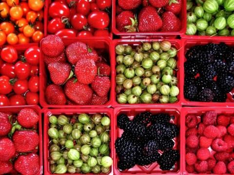 How to make fresh food last longer
