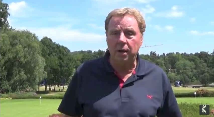 Harry Redknapp gets hit by ball again, is not best pleased